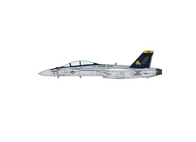 Picture Gallery for Hasegawa 2010 Boeing FA-18F Super Hornet